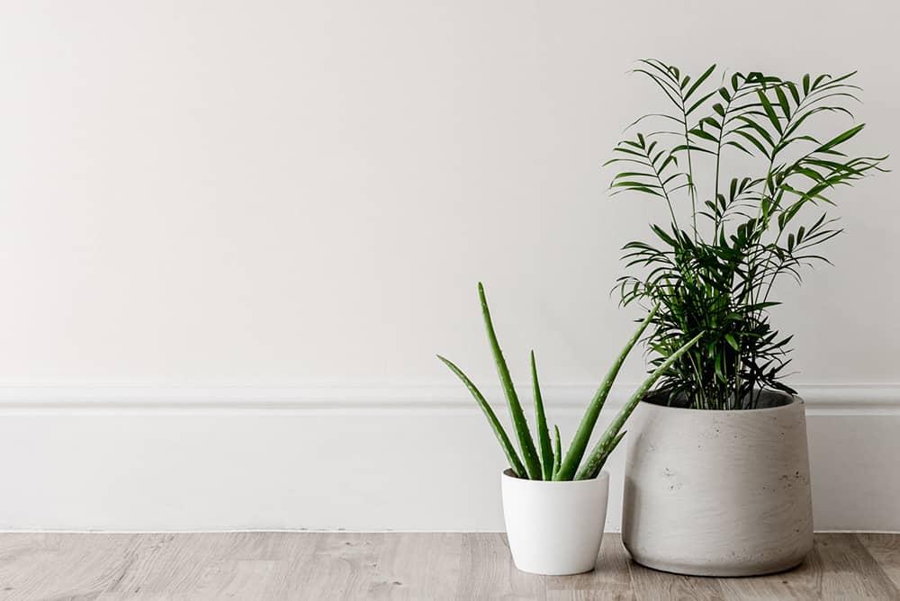 Gagner du temps en adoptant un intérieur minimaliste